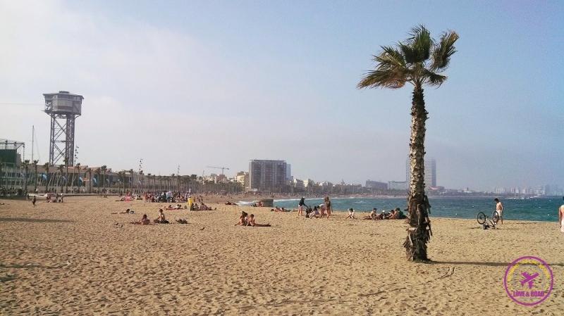 Barcelona like a local 5