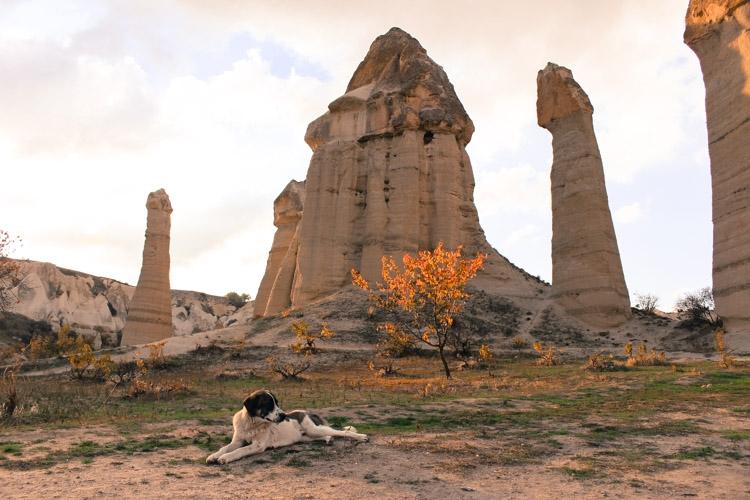 things to do in Cappadocia mustafa