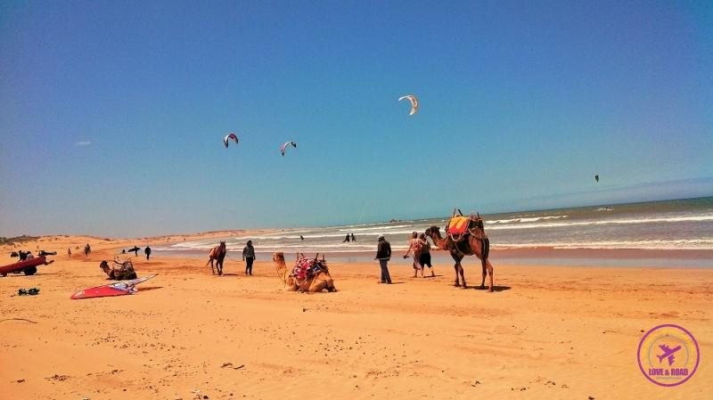 Essaouira Morocco 8