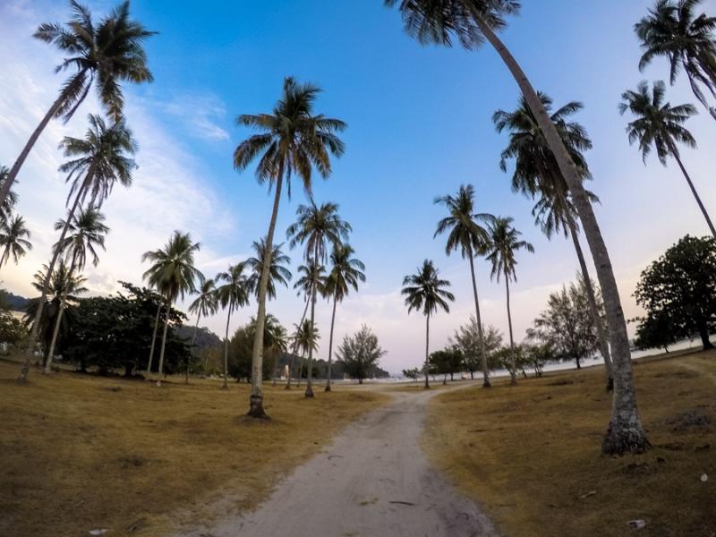 ironman langkawi palm