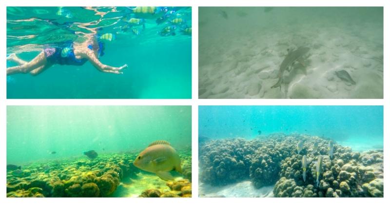 6 things to do in langkawi water.jpg