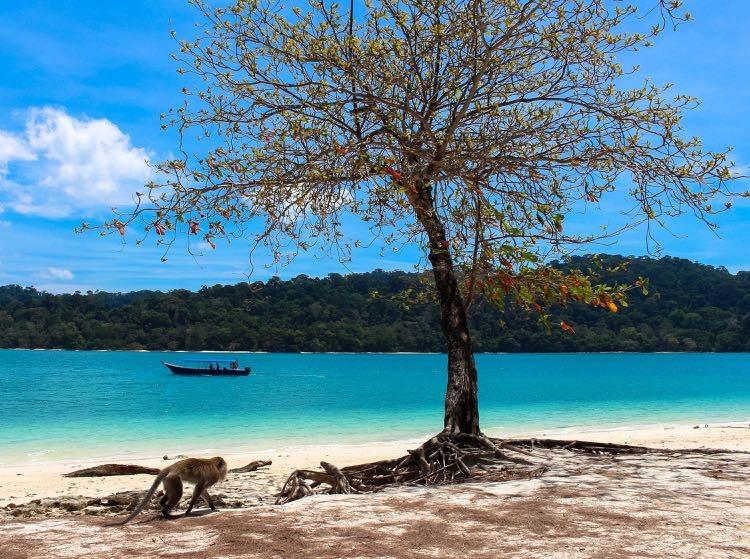 Langkawi Malaysia beach 3.jpg