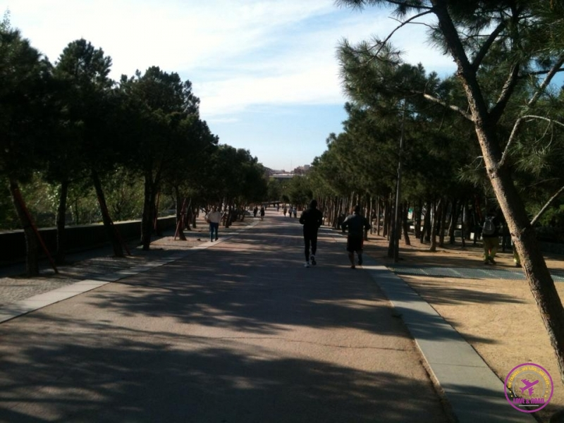 Madrid Río (Sector Central)Park.