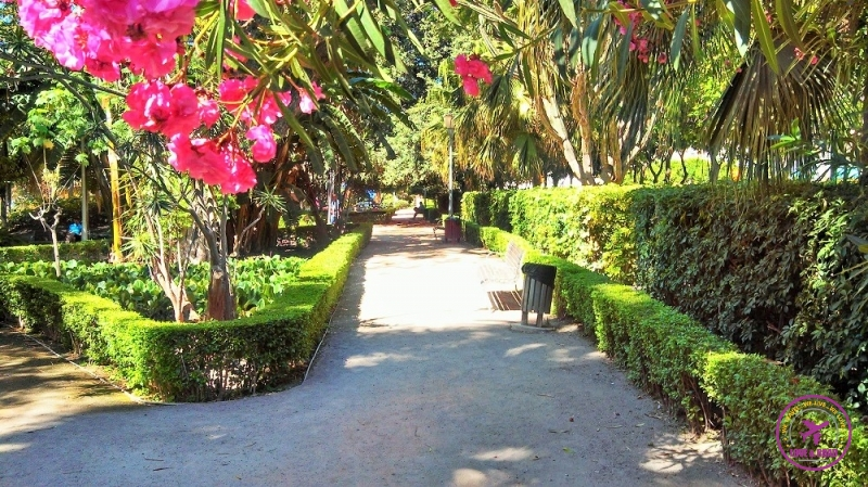 Things to do in Malaga 13