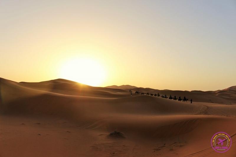 Moroccan Desert 15
