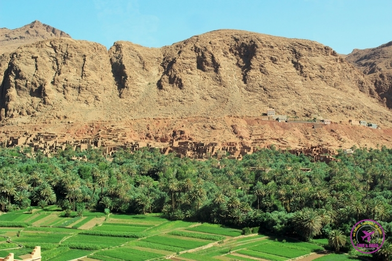 Moroccan tour 10