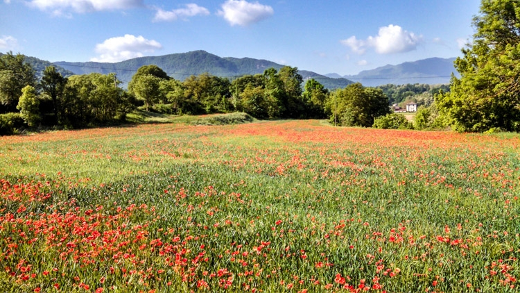 paisagens na Catalunya