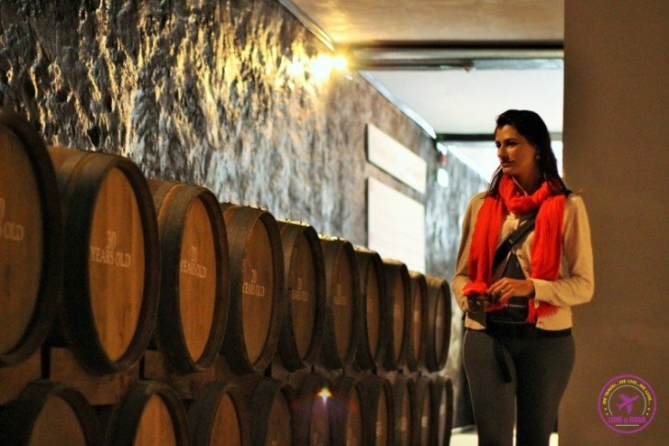 3-Nat-in-quevedo-winery