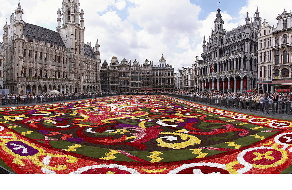 Photo credit: Wouter Hagens (license) Wikimedia Commons