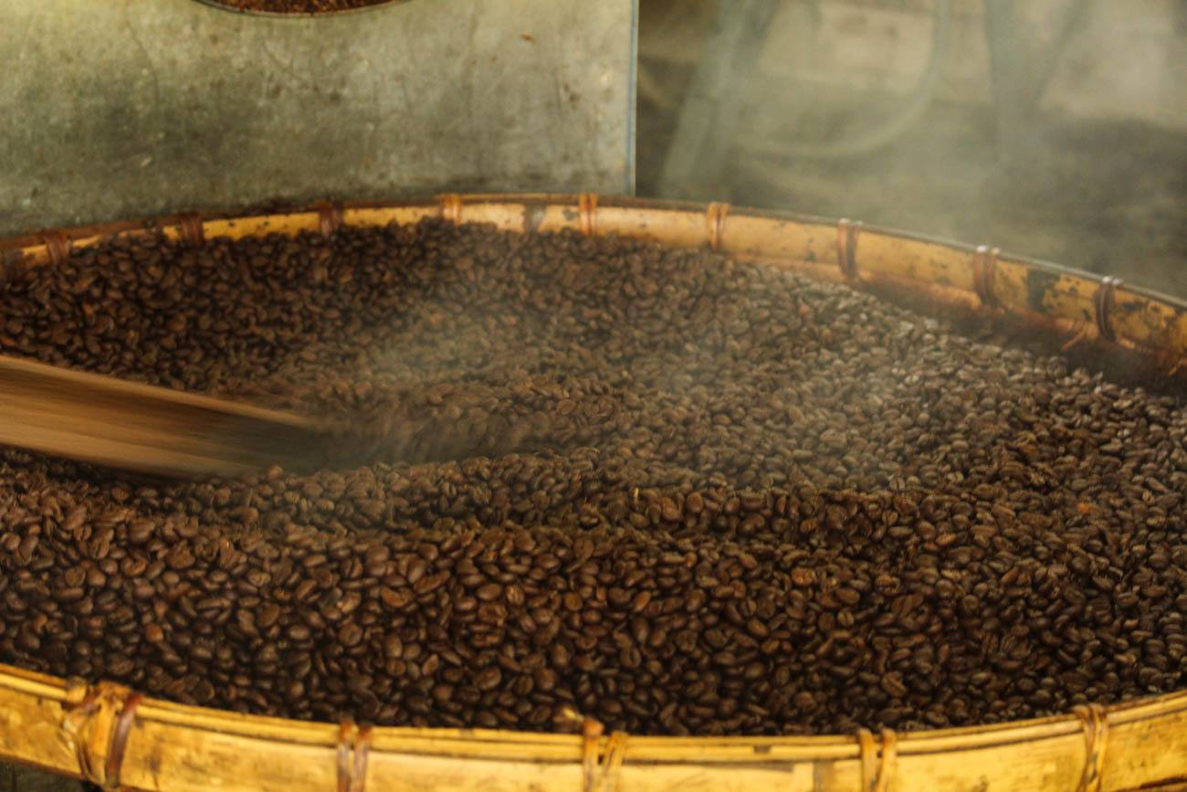 Coffee beans from a coffee tour, which is one of the things to do in Chiang Mai, Thailand.