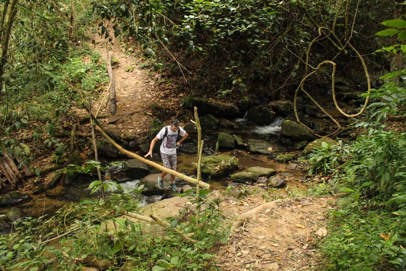 Man trying new things to do in Chiang Mai such as an adventure trekking in the woods.