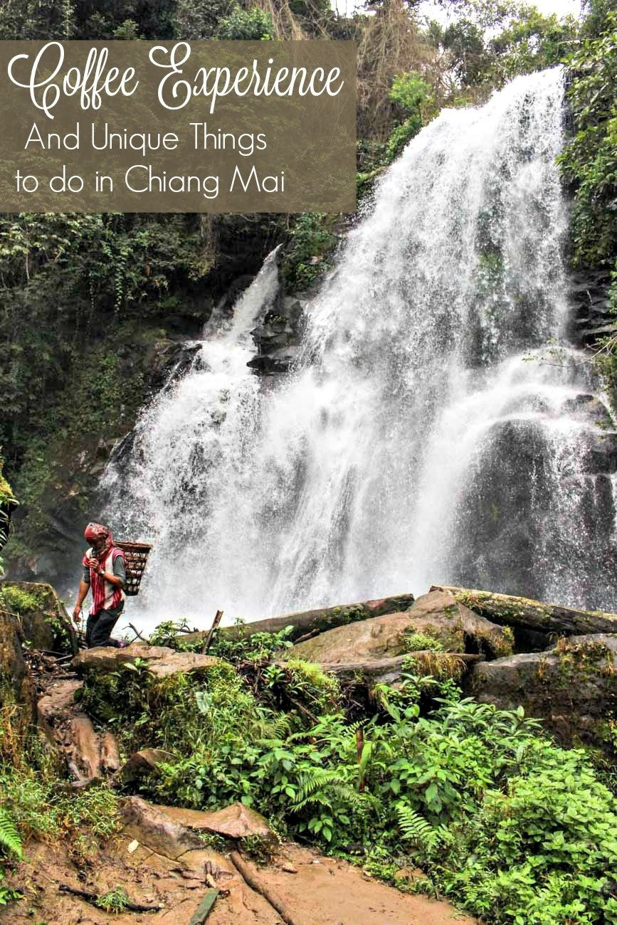 Roast your own coffee, trek to the mountains and meet the hill tribes. Discover unique things to do in Chiang Mai, Thailand. Tips on how to get there and where to stay in Chiang Mai.