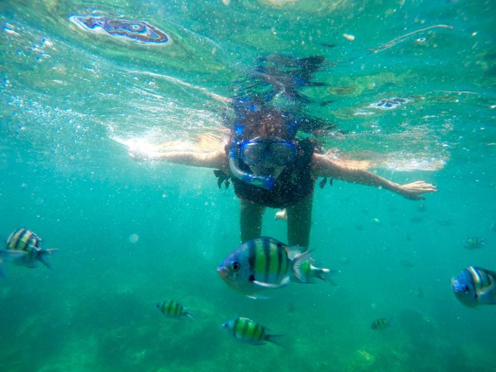 Koh Tao é uma das ilhas da Tailândia com melhor visibilidade para fazer snorkeling e mergulho!