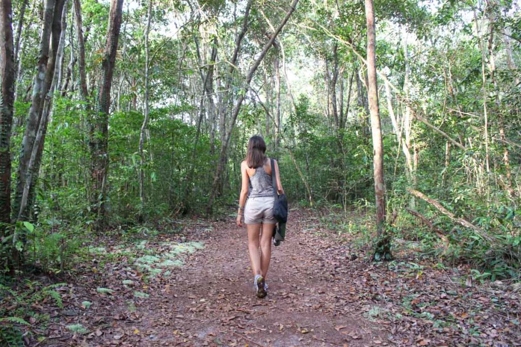 A caminhada pela floresta foi uma das partes mais fáceis da viagem ao Parque Tanjung Puting na Indonésia.