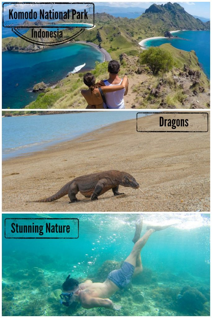 The Best of Komodo Island in Indonesia! All you need to know to plan a trip to Komodo Island. How to get to Komodo National Park, go trekking, see the Komodo dragons and go scuba diving.