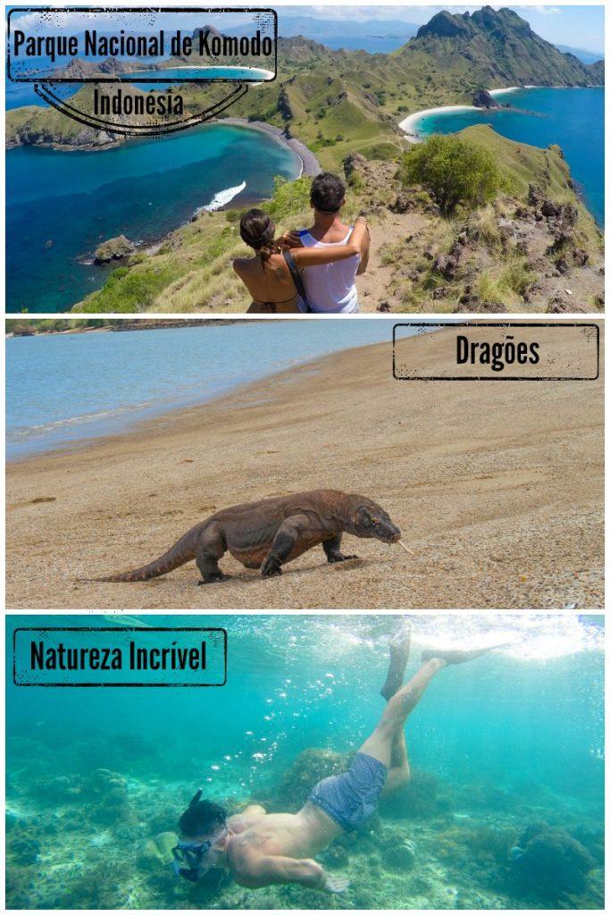 Ilha de Komodo: Dragões e Paisagens de Tirar o Fôlego! Tudo que você precisa para planejar sua viagem a Ilha de Komodo na Indonésia. Como chegar, onde ficar, passeio, os dragões de Komodo, mergulho e muito mais.