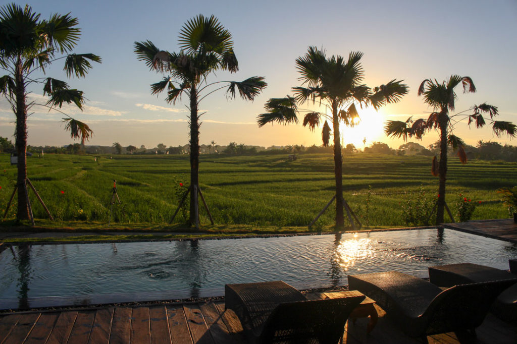 Choose your hotel based on the type of experience you wanna have and the things to do in Bali that excites you