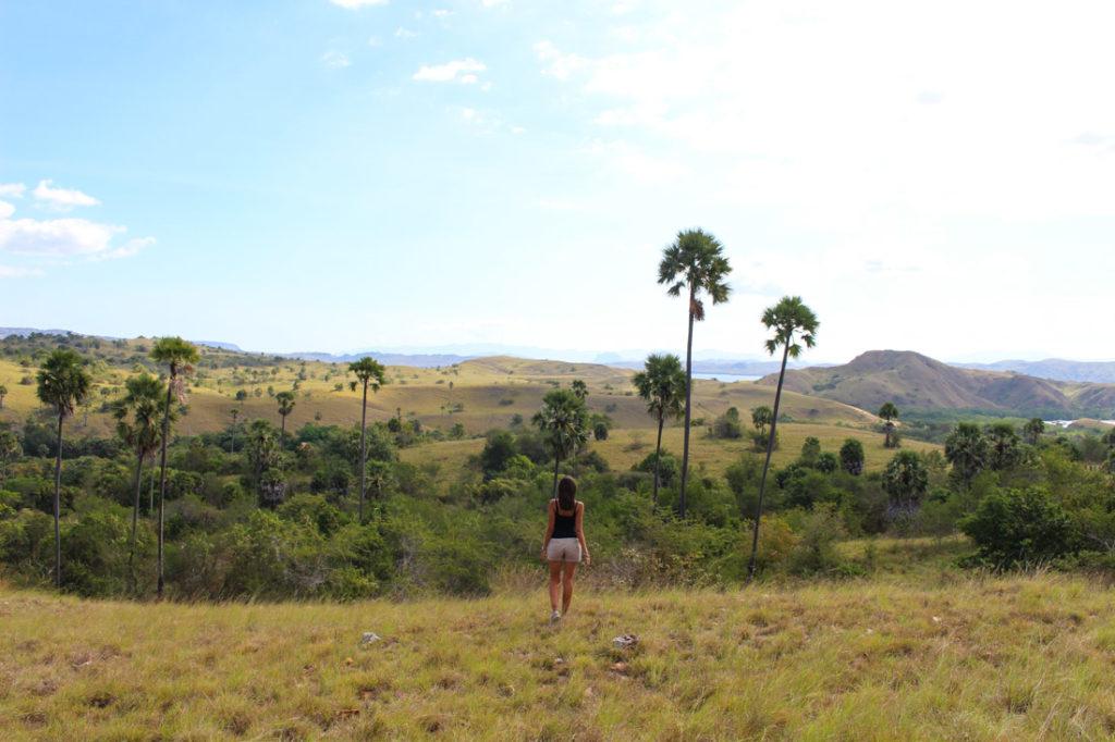 Caminhando nas trilhas da ilha de Rinca, perto da ilha de Komodo.