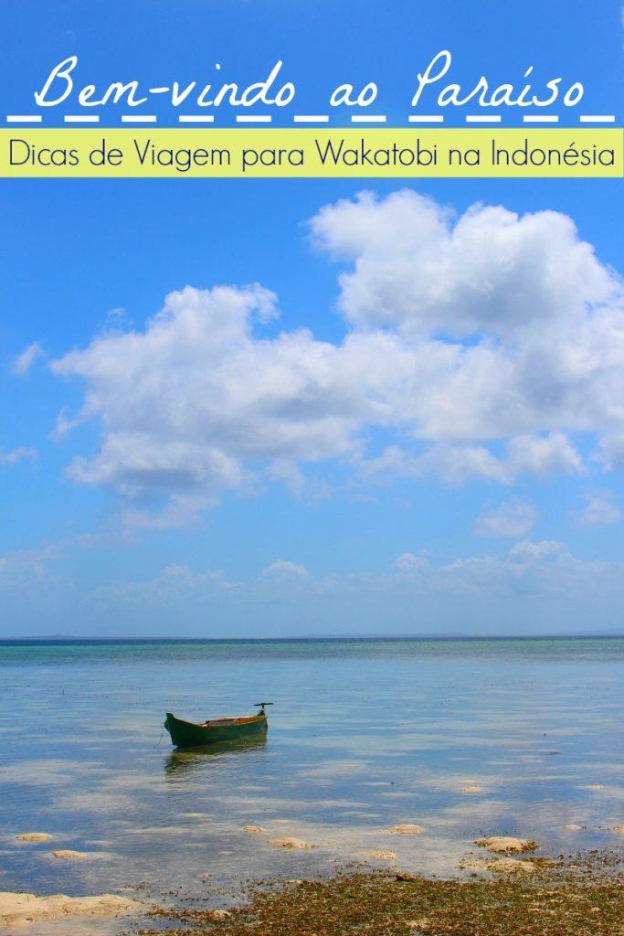 Dicas de Viagem para Wakatobi, Indonésia! Descubra o paraíso das ilhas de Wakatobi, como chegar, onde ficar e o que fazer em Wakatobi. Um guia de viagem para quem gosta de praia e mar.