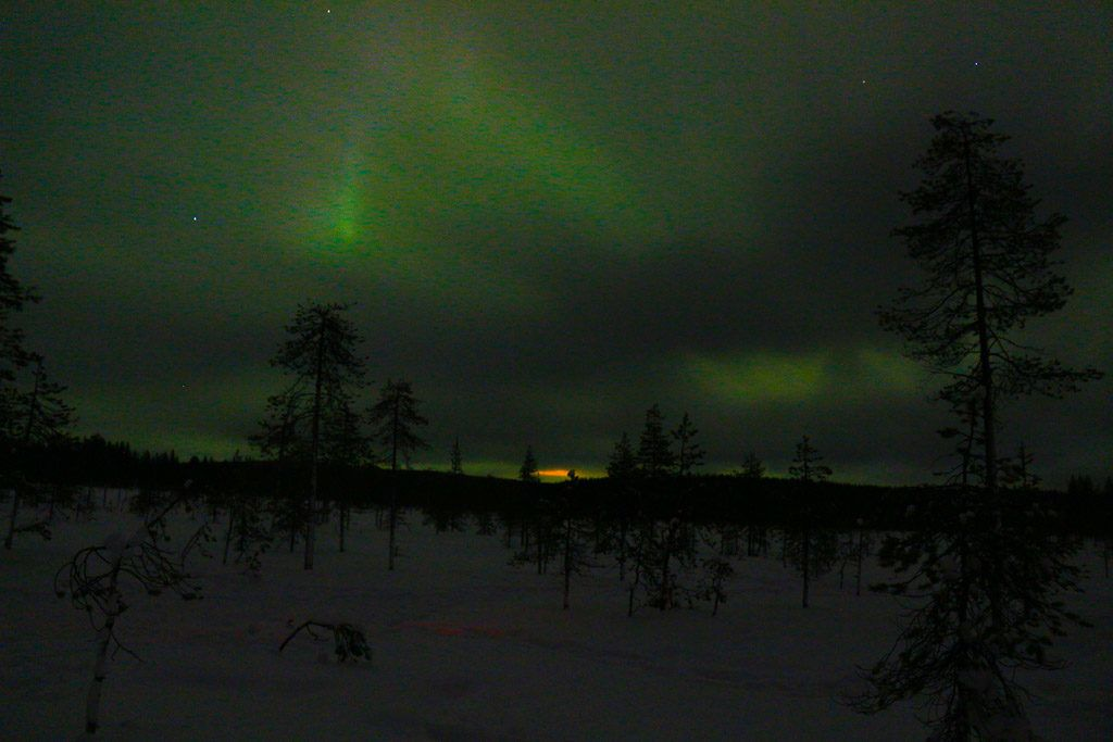 See the Northern Lights in Rovaniemi was a dream come true. The Finish Lapland is the perfect place to witness the Aurora Borealis.