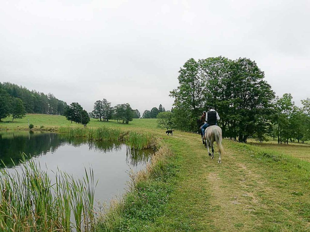 Horseback riding is another cool thing to do in the Jeseníky mountains in the Summer