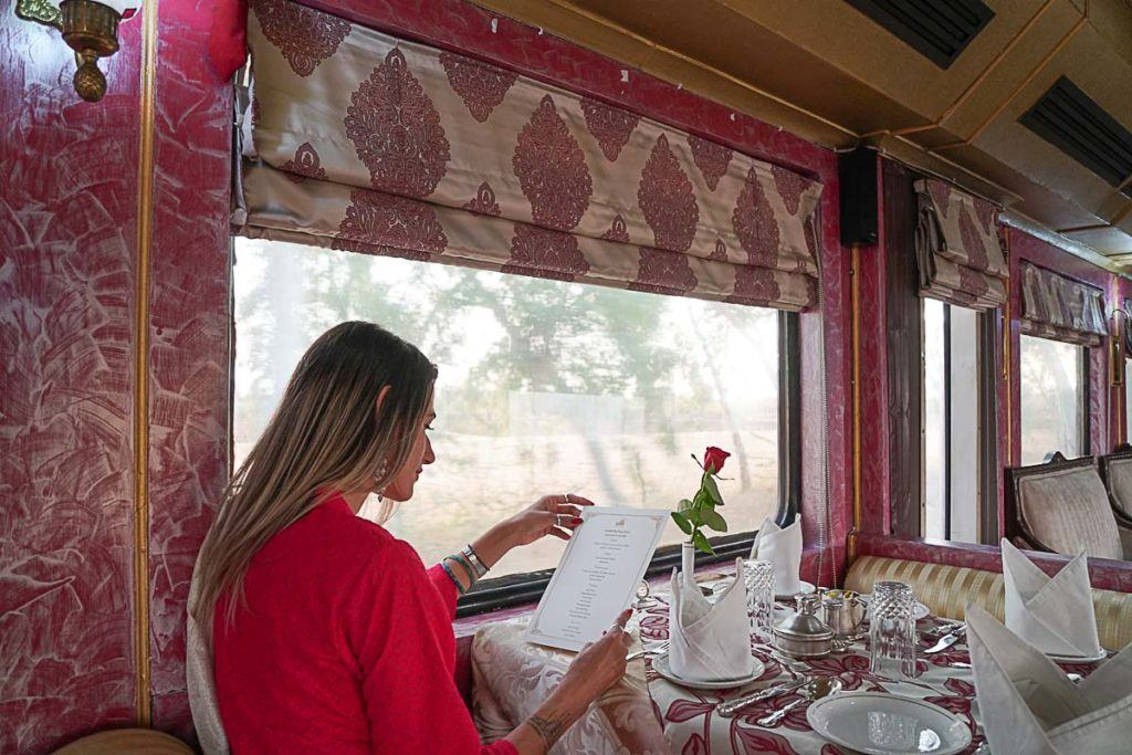 On our Palace on Wheels review we talk about all the meals served on board and also de lunch and dinners we had in the cities we visited.