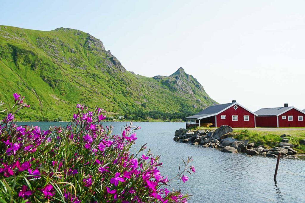 Among all the destinations we visit on our Viking Ocean Cruise itinerary, Lofoten in Norway was one of my favorite places.