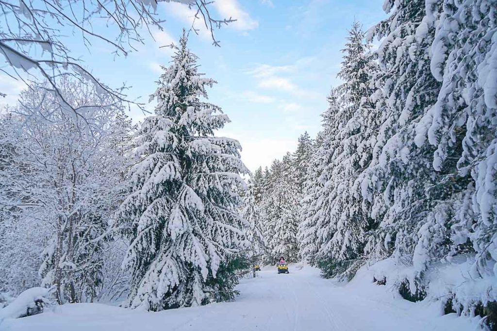 A Sibéria é um destino perfeito para férias de inverno e nas Montanhas Altai, você pode praticar qualquer tipo de esportes de inverno.
