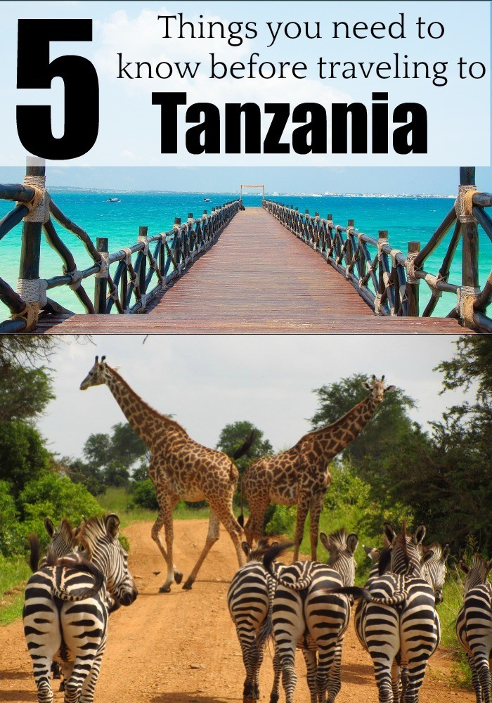 Planning or dreaming of traveling to Tanzania? Then read these 5 important tips to travel to Tanzania and enjoy this stunning country in Africa. Discover when to travel to Tanzania, where to go, how to get your visa e much more. #Tanzania #TanzaniaTravel #Kilimanjaro #Zanzibar