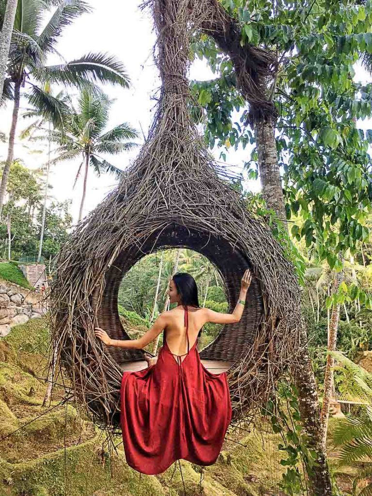 You will human-sized birds nests littered throughout Ubud.