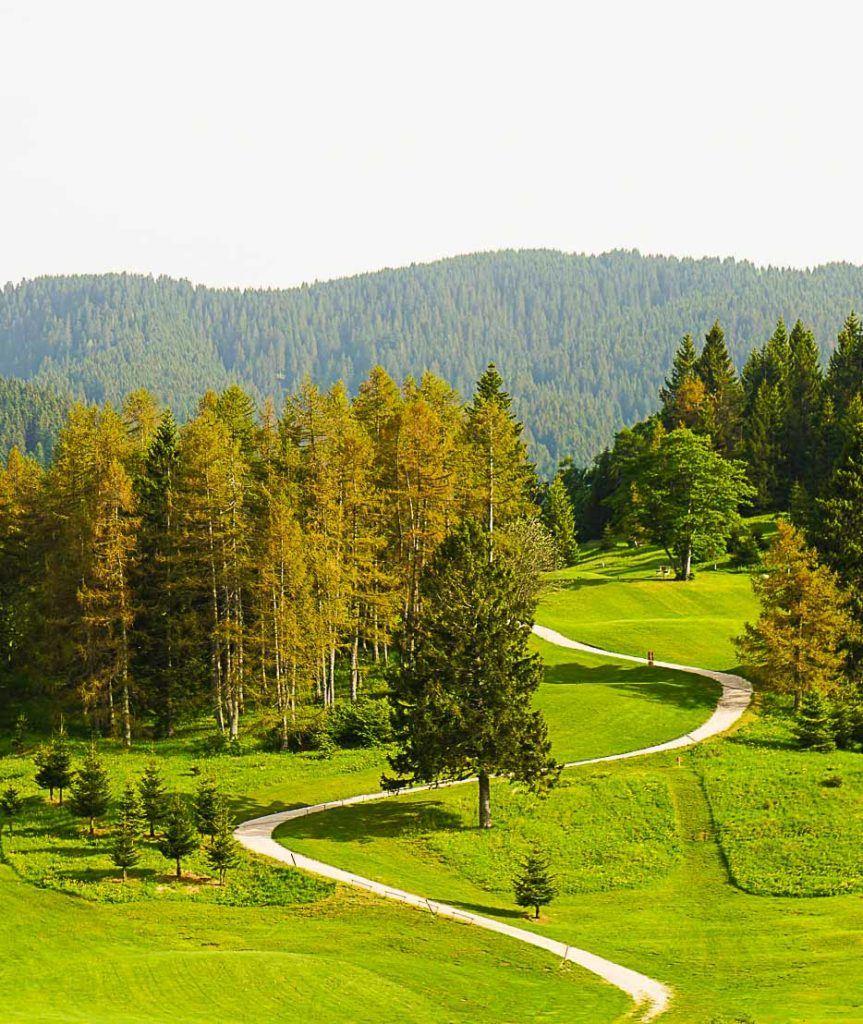 Summer in Alpe Cimbra, Trentino - Italy