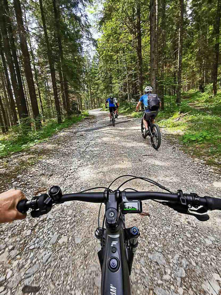 Mountain biking in Alpe Cimbra in summer.