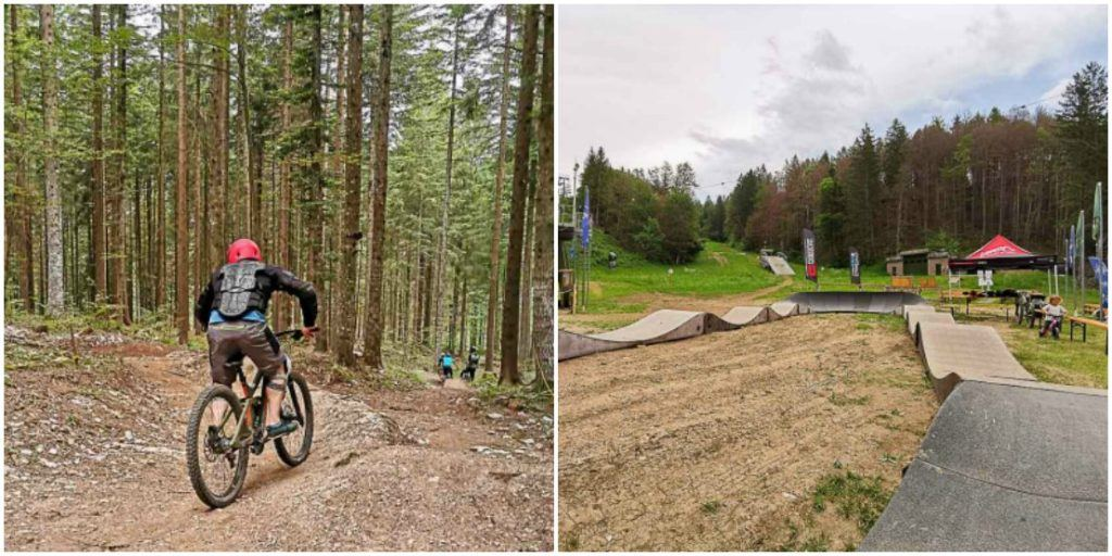 Adrenaline at the mountain bike park in Alpe Cimbra.