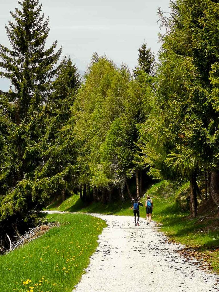 Go hiking in Alpe Cimbra in the summer.