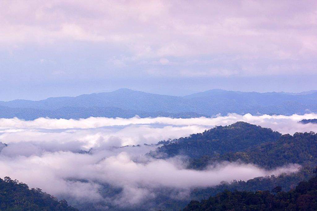 Kaeng Krachan National Park is the largest national park in Thailand.