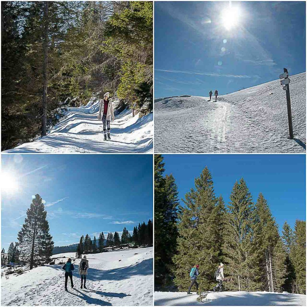 A good travel tip when visiting the Folgaria Lavarone ski area is to go for a morning hike to Monte Maggio, one of the most famous peaks in Alpe Cimbra.