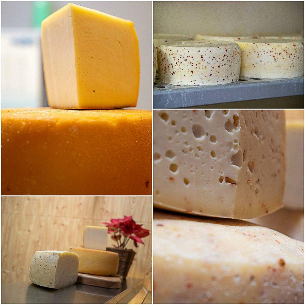 Cheese tasting at Maso Engher in Folgaria is a delicious gourmet experience in Alpe Cimbra.