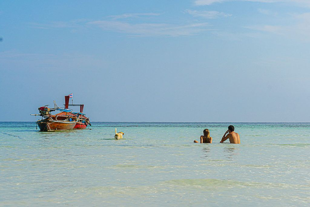 A couple and a dog enjoying Koh Lipe's crystal clear ocean.