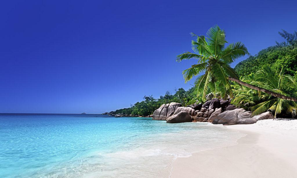 A beach on Praslin Island, Seychelles. In this article we talk about all costs of traveling in Seychelles. Prices of food, drinks, transport, accommodation and attractions that will make your Seychelles trip budget planning much easier.