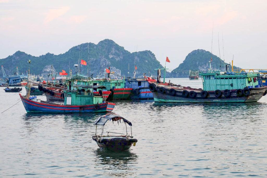 Photo of many fishing boats at the front and some limestone karts in the background. The typical scenery you see on Vietnam's north coast.